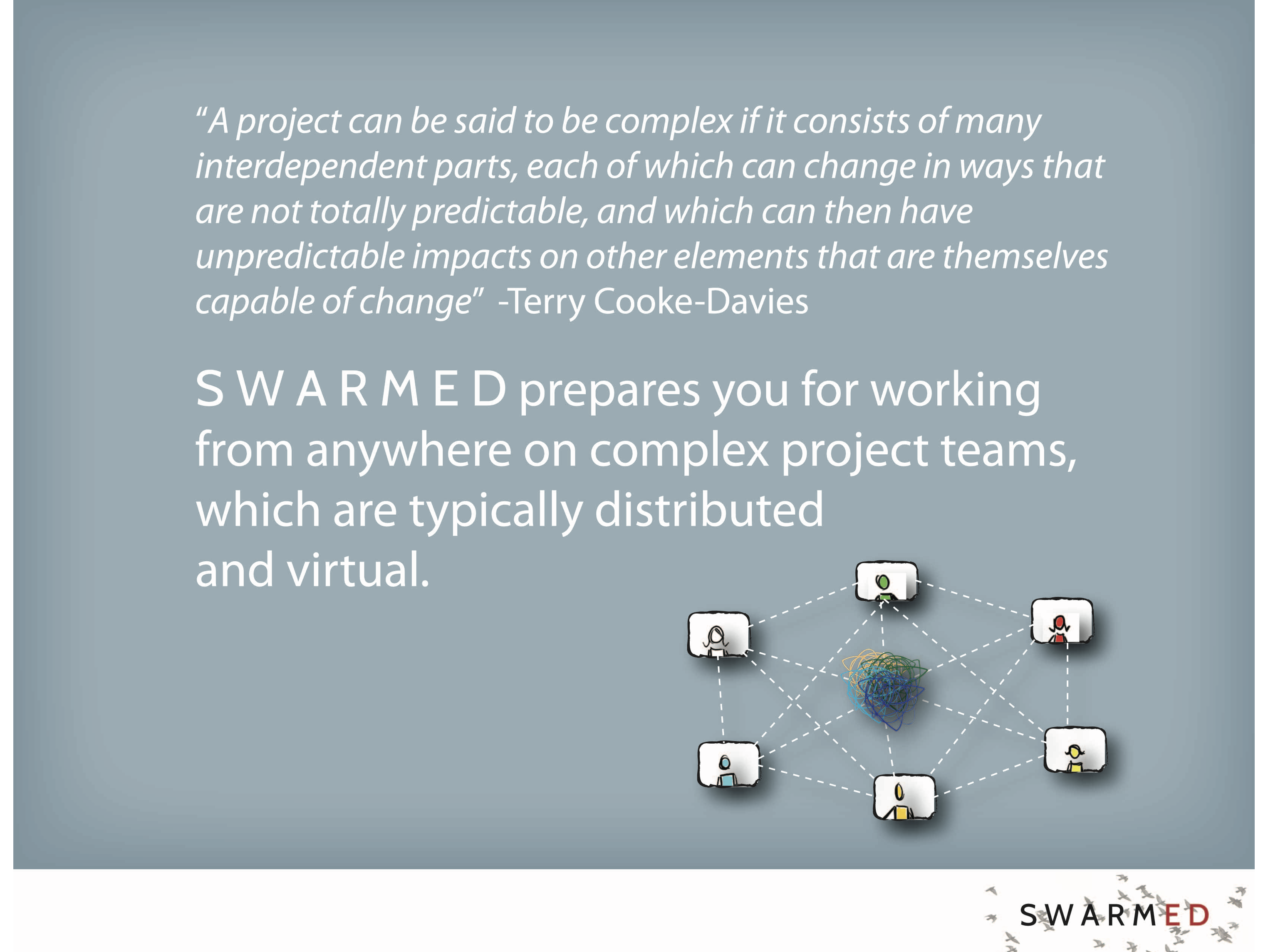 SwarmED created by Orla de Díez @ kitchentablepolicymaker